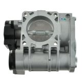 Pontiac Throttle Body & Related